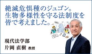 現代法学部 片岡 直樹 教授